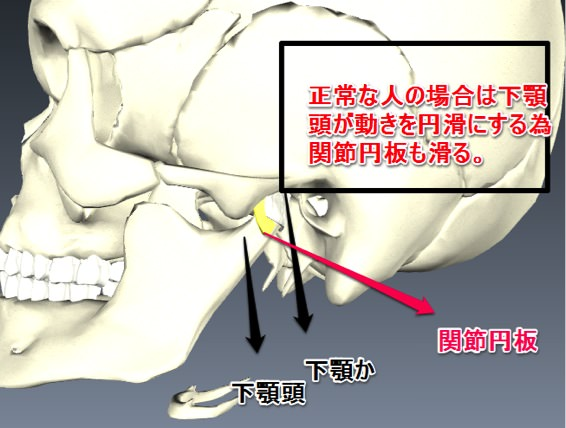 Temporomandibular joint 01
