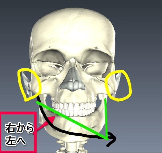 Temporomandibular joint 03