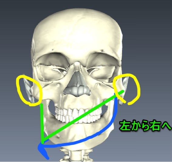 Temporomandibular joint 04